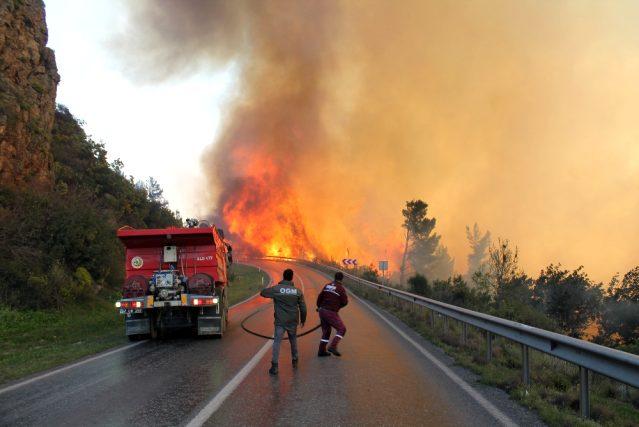 Rüzgarın etkisiyle kısa sürede büyüyen yangın 15 hektar alanı kül…